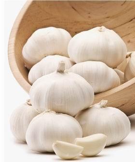 高抗病华农2号(白皮)大蒜